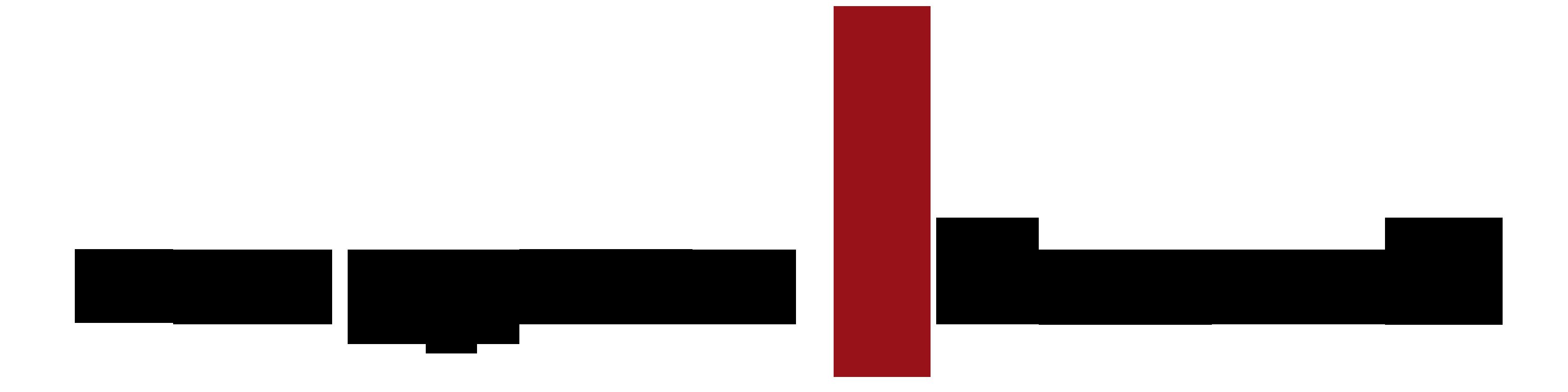 manager_na_obcasach_logo_bez_tla